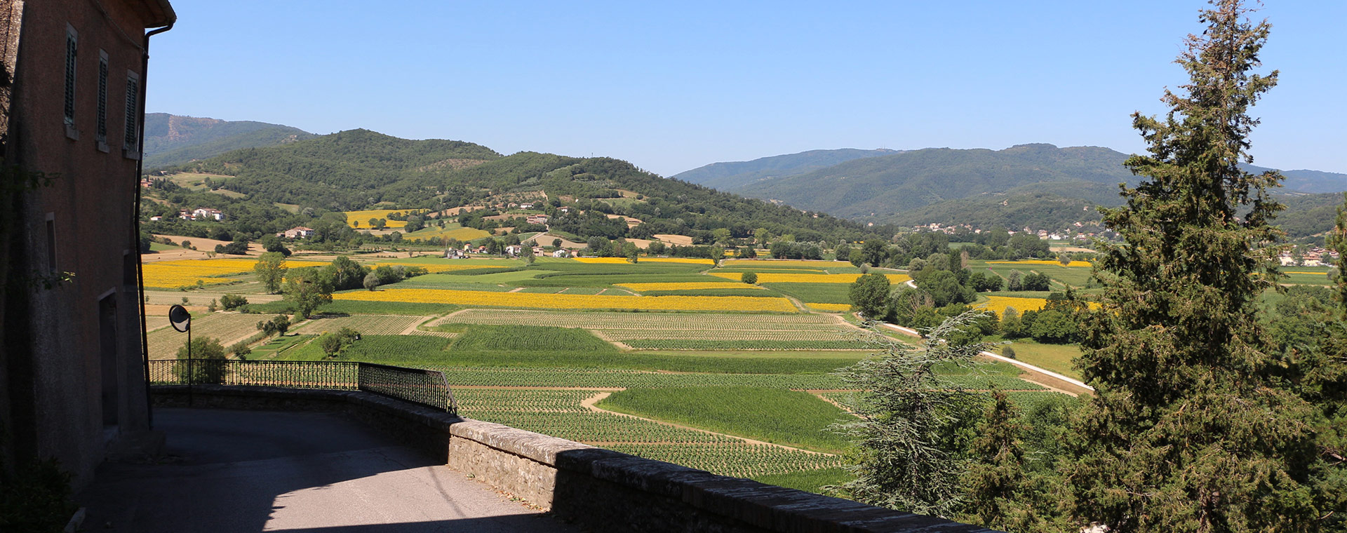 Villas for sale in tuscan countryside